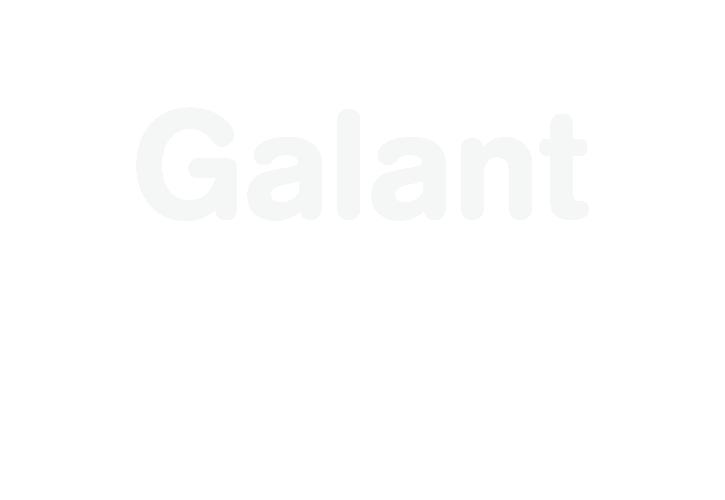 logoer_til_web-galant